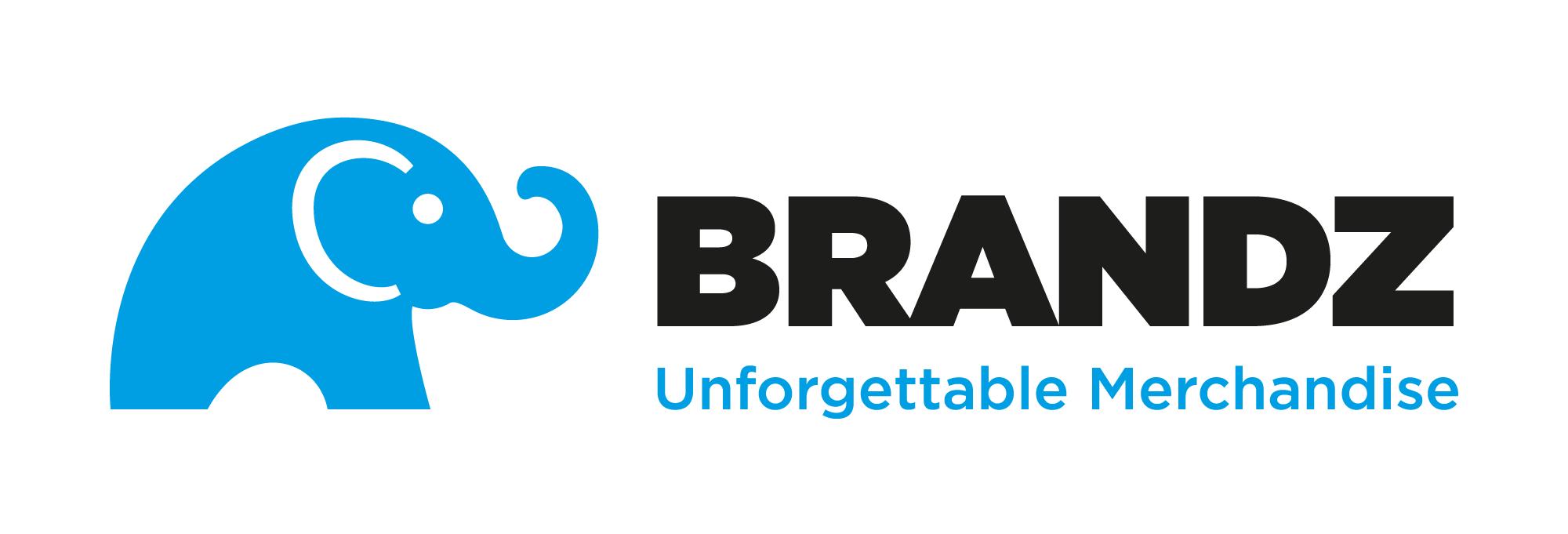 Brandz logo horizontal blue