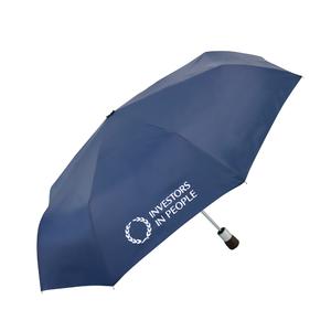 Mini umbrella 01