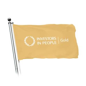Iip flag concept 01 02